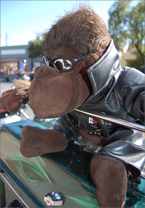 Event photography - Biker gorilla at Tucson Law Enforcement Motorcycle Festival and Swap Meet