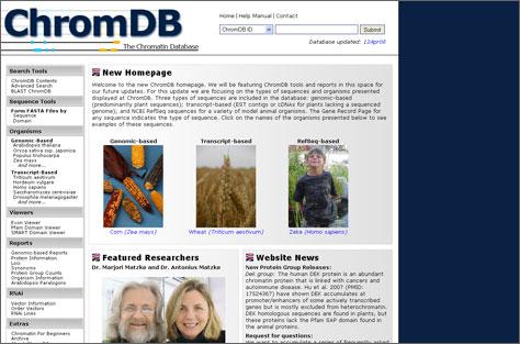 Web Design: International DNA Research Database